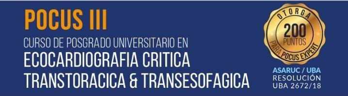 CURSO DE ECOCARDIOGRAFÍA CRÍTICA 2020