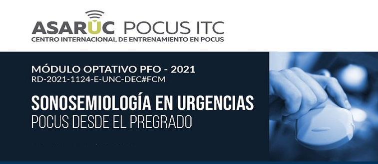 SONOSEMIOLOGIA EN URGENCIAS - POCUS PREGRADO